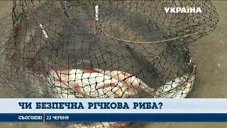 видео Водойми Київщини стануть крутим