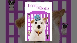 Hotel For Dogs 1 10 Movie Clip How To Steal Food 2009 Hd Youtube