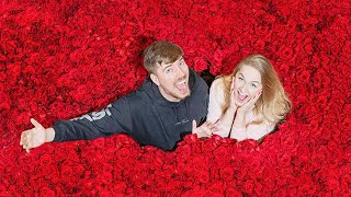 Download Surprising My Girlfriend With 100,000 Roses For Valentines Day Mp3 and Videos