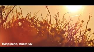 Jan-David Franke - Flying sparks, tender July (Original)