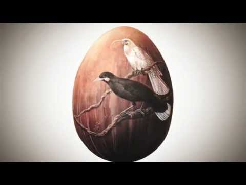 "Timelapse of Sofia Minson painting ""Huia"" artwork for The Big Egg Hunt"