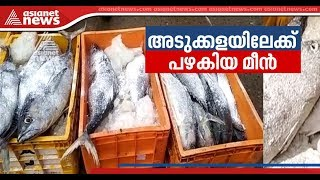 1500 kg  chemical-laced fish seized in Kayamkulam