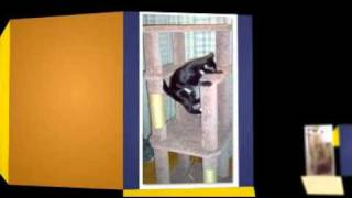 Carpeted Cat Tree Plans