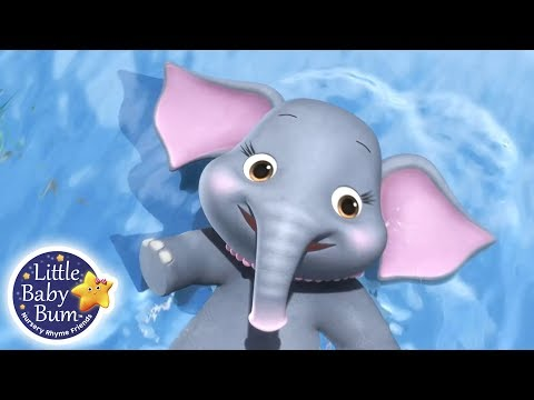 Learning Animals For Kids | 5 Elephants Having A Wash | Little Baby Bum Learning