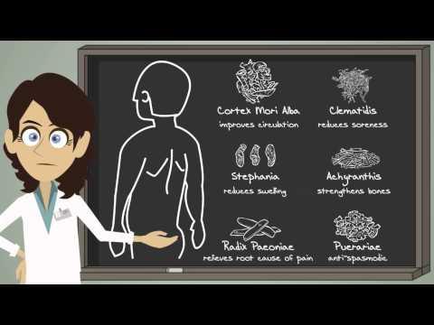 Jadience Herbal Formulas History & Formulation