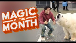 New Years Resolution Tricks | MAGIC OF THE MONTH - January 2020 YouTube Videos