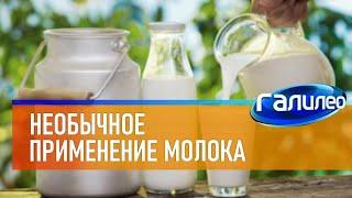 Галилео 🥛 Необычное применение молока