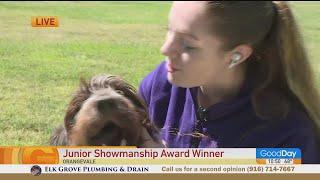 Westminster Kennel Club Junior Showmanship Award Winner!