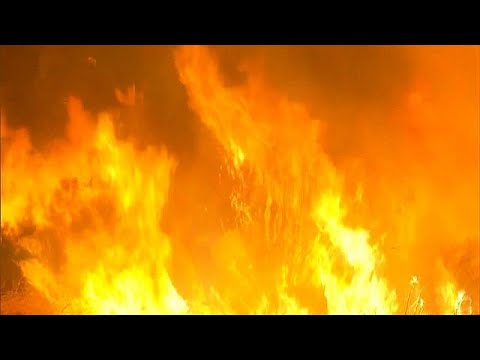 California wildfire: thousands evacuated from Ventura County