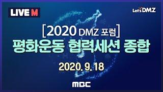 [2020 DMZ포럼] 평화운동 협력세션 종합 (202…