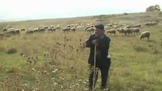 Makidonia - Cantic ti Camena [www.kostyjupanu.ro]