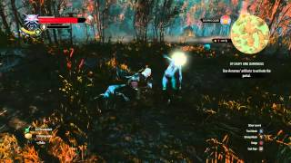 Witcher 3: Wild Hunt - Enemy of my Enemy Guide