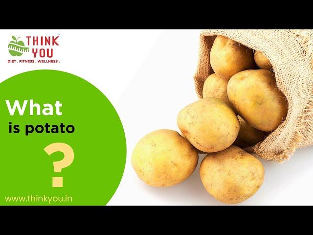 What is Potato?