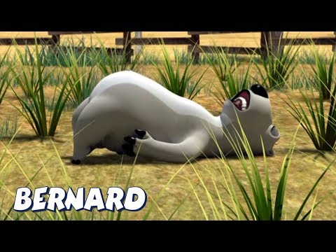 Bernard Bear | 🌾🌱Cutting The Grass AND MORE🌱🌾 | Cartoons For Children | Full Episodes