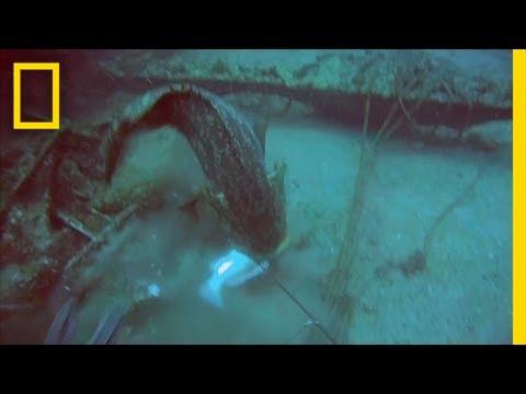 Fisherman loses his temper underwater