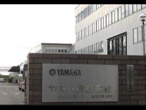 Yamaha Corporation Guitar Factory China ...