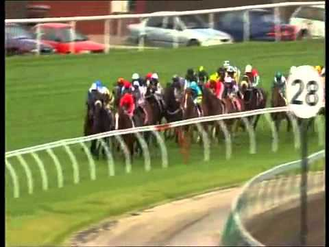 2009 Melbourne Cup - Shocking