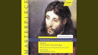 Die Himmel erzahlen die Ehre Gottes, BWV 76: Aria: Fahr hin, abgottische Zunft! (Bass)