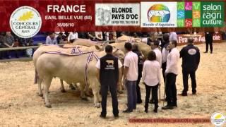 Encheres Blondes d'Aquitaine SIA 2016
