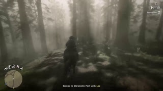 Red Dead Redemption 2 Chill stream