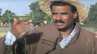 Al Alami - Ach Dani Lmdina | Music, Rai, Chaabi,  3roubi - راي مغربي -  الشعبي
