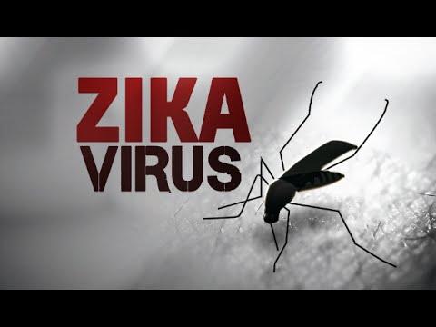 Top Reme To Treat Zika Virus