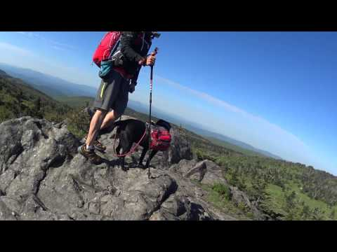 Blind hiker, Trevor Thomas and guide dog Tennille hiking
