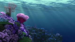 Finding Nemo Haiku