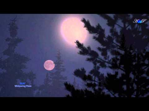 ♡ SEAY - Whispering Pines (beautiful, relaxing music)