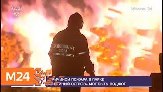 Смотреть видео Минприроды оценило пожар в Лосином острове - Москва 24 онлайн
