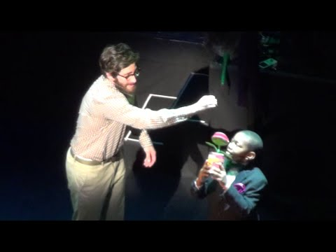 Grow for Me - Jake Gyllenhaal - Little Shop of Horrors - 2015 Encores! Off-Center