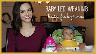 Baby Led Weaning | Basics for Beginners
