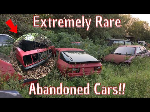 We Found Some Incredible Abandoned Cars!!