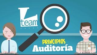 Auditoría Principios y Generalidades