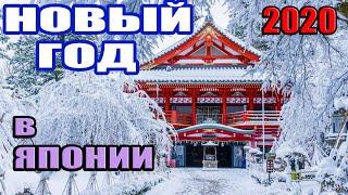 Новый Год 2020 в Японии. Как отмечают?  — Прямая трансляция из Японии от пан Гайджин