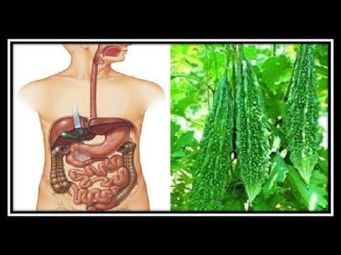 Top 10 Health Benefits of Bitter Melon(Bitter Gourd)