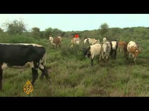 Al Jazeera : Kenyan Farmers Fighting over Scarce Land