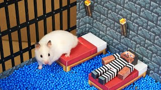 Hamster Escapes from the Minecraft Prison Maze