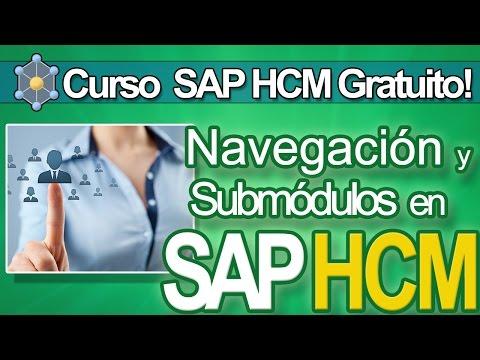 Curso Consultor SAP de YouTube · Duração:  3 minutos 42 segundos