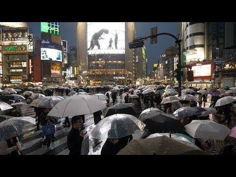 【4K】Rainy night at Tokyo Shibuya