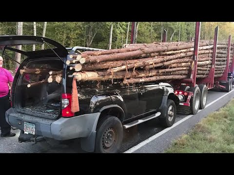 Nard - #GoodNews: Driver Miraculously Saved After Car Impaled By Logs On Truck