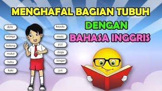 Belajar Bahasa Inggris Nama Bagian Tubuh   Bahasa Indonesia