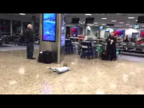 Baby Bowling at The Salt Lake Airport