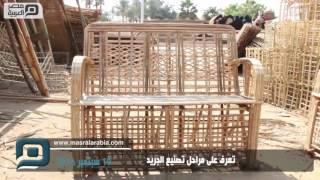 مصر العربية | تعرف على مراحل تصنيع الجريد