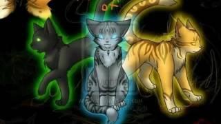 Коты - Воители Троица!  Воробей, Львиногрив и Остролистая!