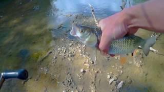 Рыбалка#Адыгея#река Фарс#ГОЛАВЛЬ#2018