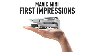 Mavic Mini First Impressions | The Everyday Flycam | DansTube.TV