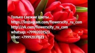 Только свежие Цветы- интернет магазин(, 2015-09-06T15:02:32.000Z)