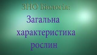 ЗНО Біологія  Загальна характеристика рослин