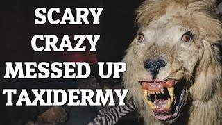 Shocking & Disturbing Taxidermy Fails